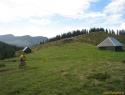 Čez mali Travnik; v ozadju desno Raduha.