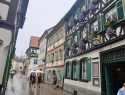 Bamberg.