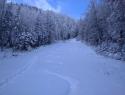 V dolino nisem peljal čez Šenfelderco, saj je bila že razrita.