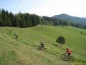Lep travnik.