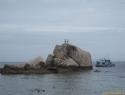 Tanote Bay (Ko Tao).