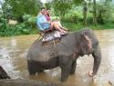 Na slonu severno od Chiang Maija.